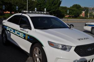 police car 1500x995